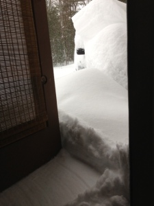 Next time I will remember to open the door once or twice to push away the snow.