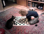 Author Peter Smalley's son levies a crushing defeat on the family cat.